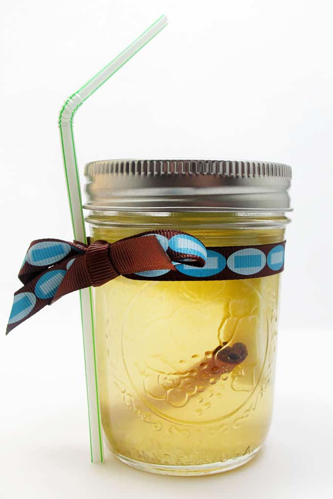 white wine sangria in a mason jar with straw