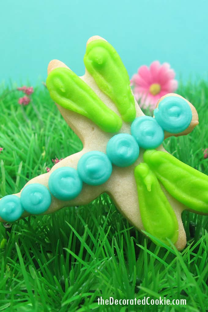 dragonfly cookie