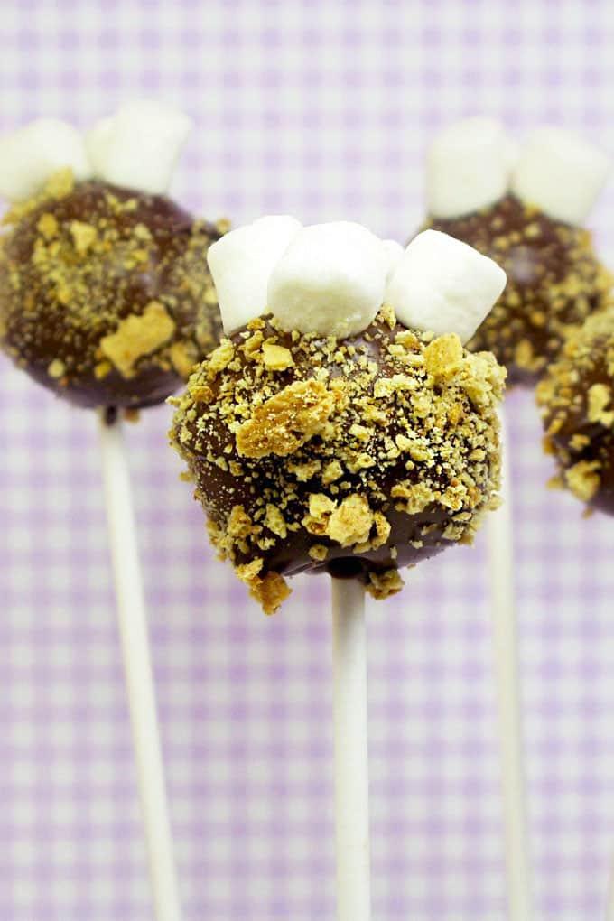 s'mores cake pops, a cute treat for summer #smores #cakepops
