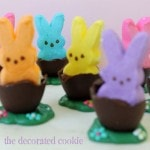 Peeps chocolate easter eggs