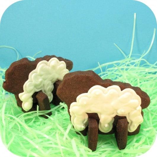rd.sheep1_