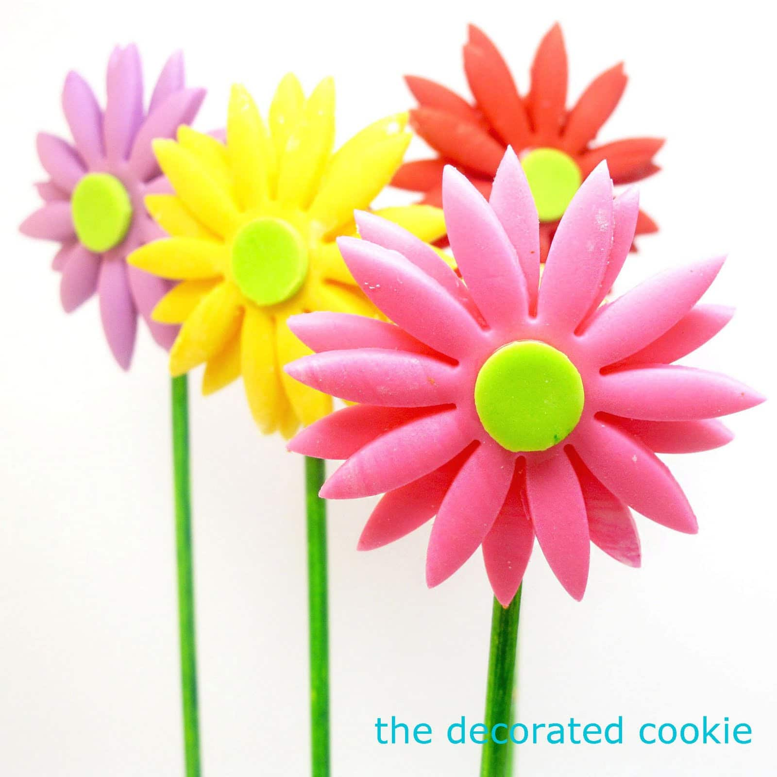 Fondant Gerbera Daisy Cookie Pops The Decorated Cookie