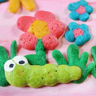 bug and flowers pancake art