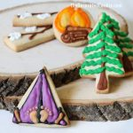 DECORATED camping themed cookies