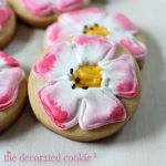 Get Well flower cookies