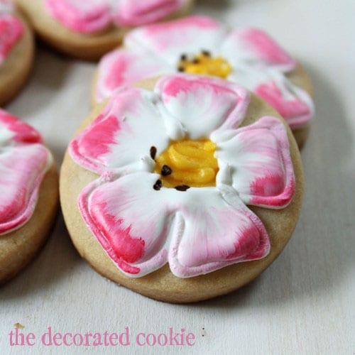 painted get well cookies: Eglantine Roses