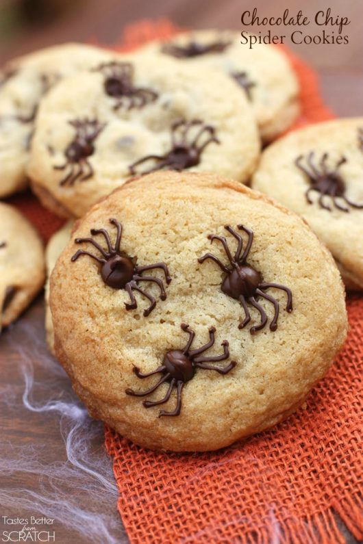 spider-chocolate-chips