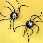 wm_spidercakester_blog