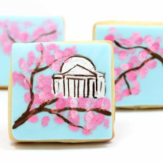 cherry blossom painted cookies, Washington DC in the spring