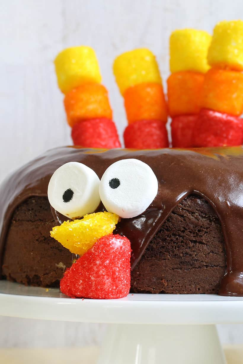 urkey chocolate cake with marshmallow feathers for Thanksgiving