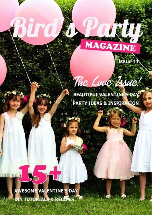Bird's Party Magazine - Issue 11 Cover