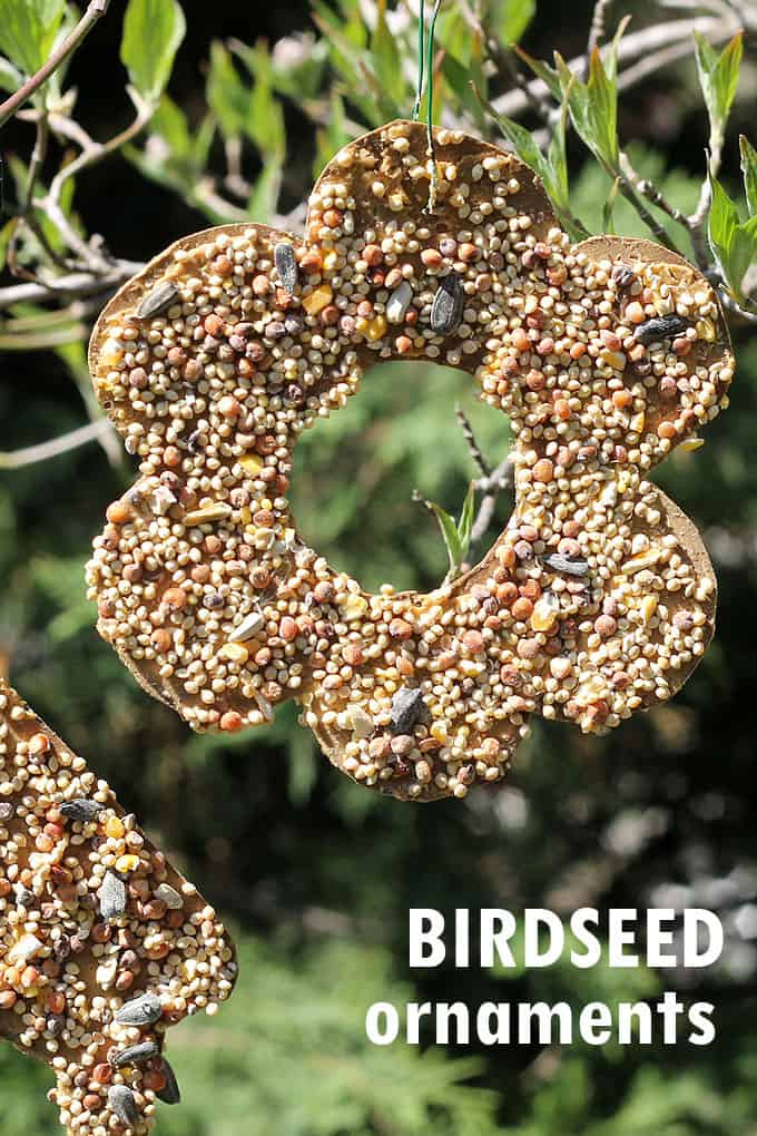 With cardboard, peanut butter, and birdseed, kids and adults can both make these easy birdseed ornaments garden craft. Video tutorial included.