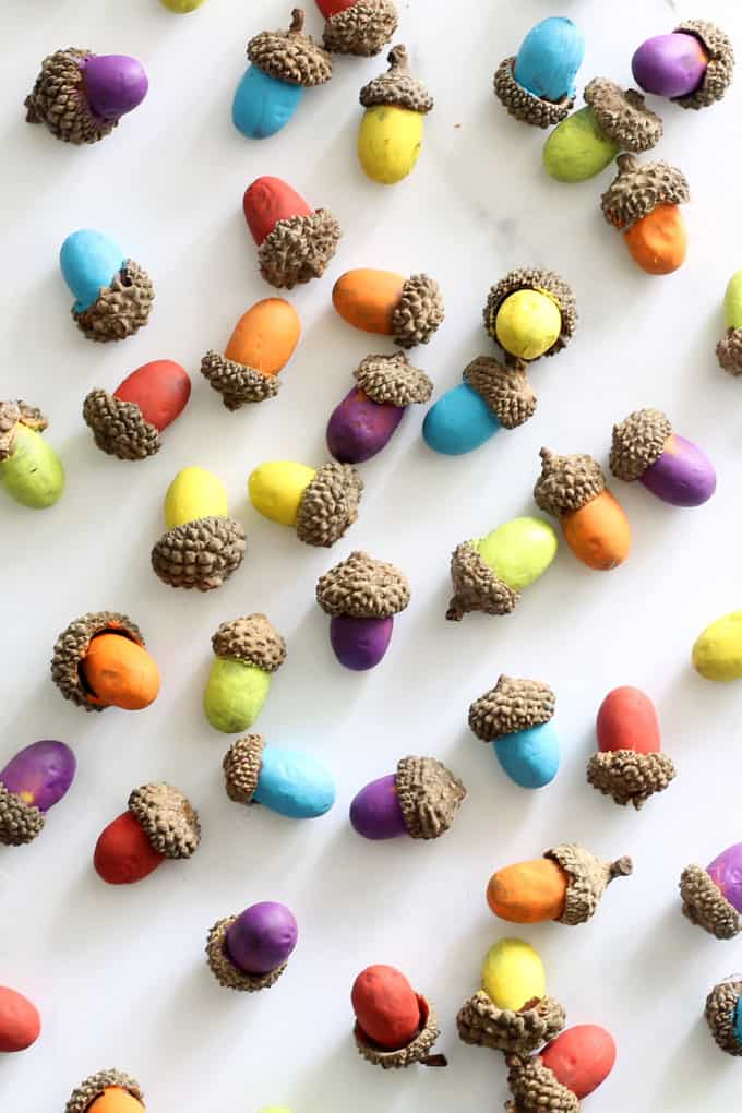 These colorful painted acorns are an easy home decor craft or centerpiece for Fall or for your Thanksgiving table. Rainbow acorns!