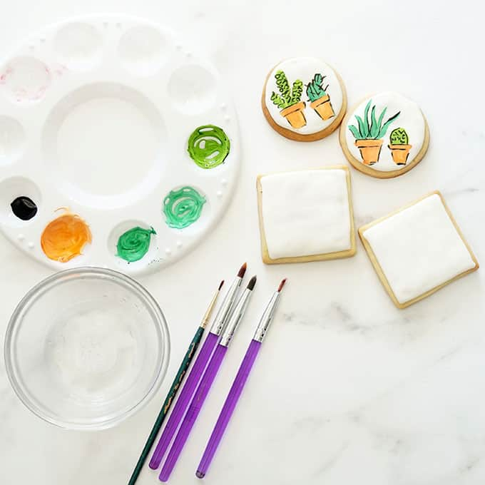 tools to make painted succulent cookies