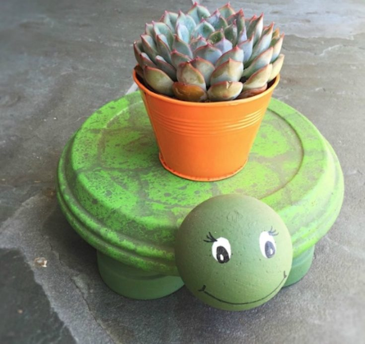 Clay Pot Turtle