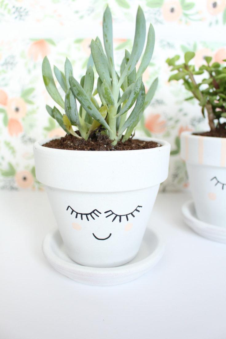DIY Pretty Face Planters